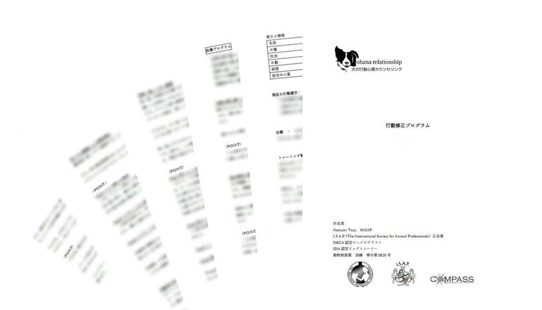 行動改善レポートの送付